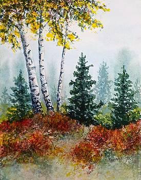 Autumn Birch by Carolyn Rosenberger