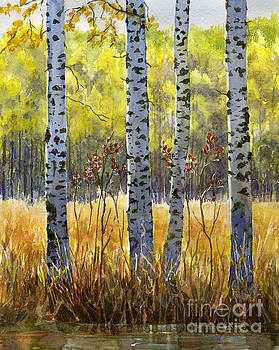 Sharon Freeman - Autumn Birch Trees in Shadow