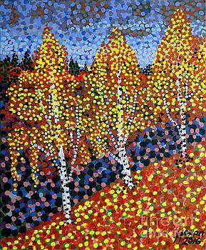 Alan Hogan - Autumn Birches