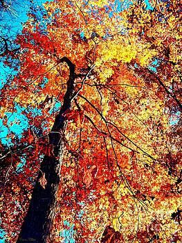 Autumn Bliss by Dani Stites