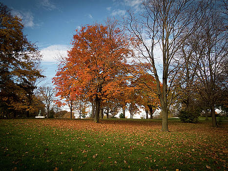 Autumn Bliss by Kimberly Mackowski