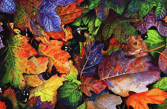 Autumn Blues by Peter Williams