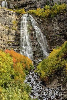 Autumn - Bridal Veil Falls - Provo Canyon - Utah by Gary Whitton