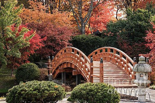 Autumn Bridge by Andrea Silies
