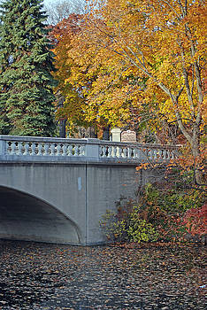 Autumn Bridge by Lisa Gabrius