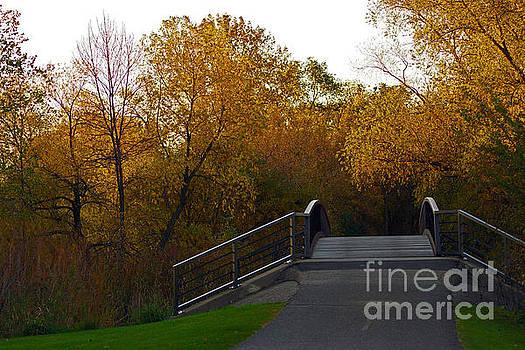 Autumn Bridge by Robin Clifton