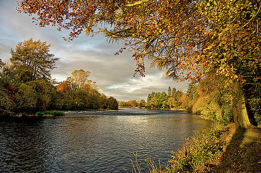 Autumn by the River Ness by Jacqi Elmslie