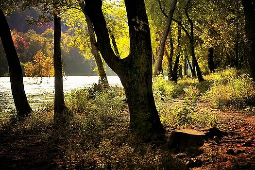Autumn by the River by Scott Fracasso