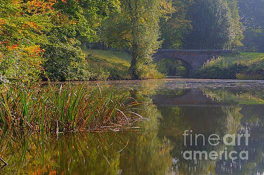 Autumn calm by Steev Stamford