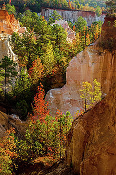 Autumn Canyon Layers by Eric Albright