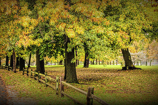Randall Nyhof - Autumn City Park Scene with Wood Fence
