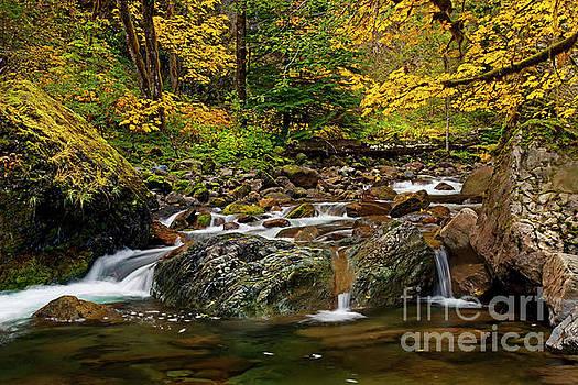 Autumn Clear by Mike Dawson
