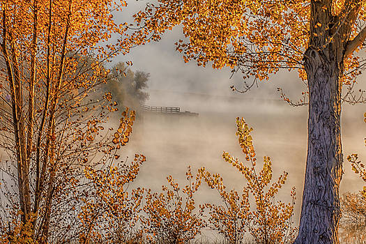 Marc Crumpler - Autumn Color and Fog