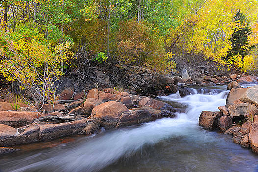 Autumn color in Bishop by Dung Ma