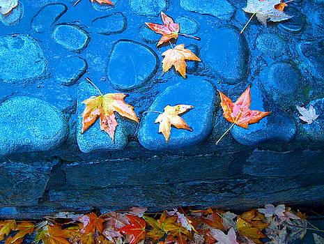 Autumn Colors   by Denise   Hoff