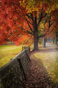 Autumn Colors 2 by Scott Fracasso
