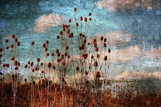 Autumn Colors 27 by Scott Fracasso