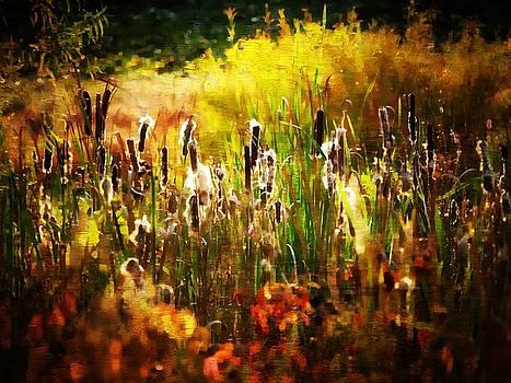 Autumn Colors 33 Oil by Scott Fracasso
