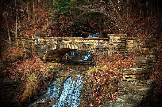 Autumn Colors 36 by Scott Fracasso