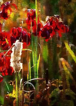 Autumn Colors 40 by Scott Fracasso