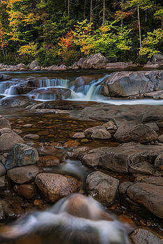 Ranjay Mitra - Autumn Colors in White Mountains New Hampshire