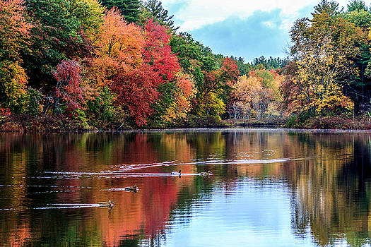 Autumn colors over the Lamprey by Patrick Lombard