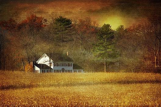 Autumn Colors by Stephanie Calhoun