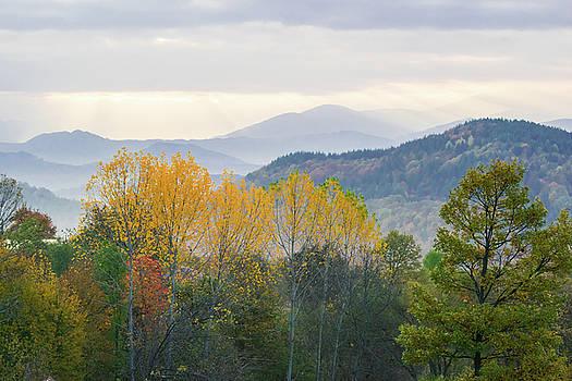 Autumn colours by Julien Van Dommelen