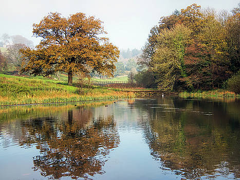 Autumn Colours - Somerset by Susie Peek