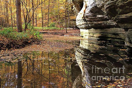 Autumn Comes To Illinois Canyon  by Paula Guttilla