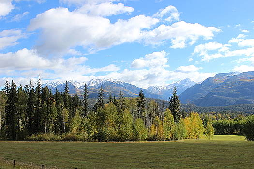 Autumn Coming by Craig Butler