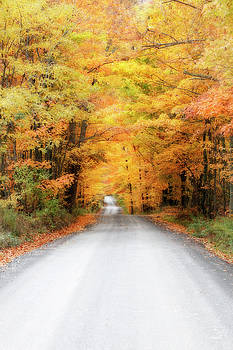Autumn Country Road by David Simons