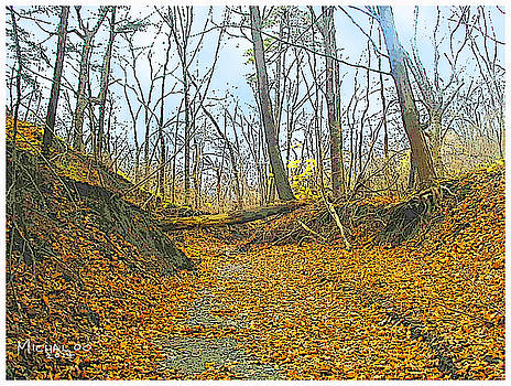 Autumn Creekbed by Michael A Klein