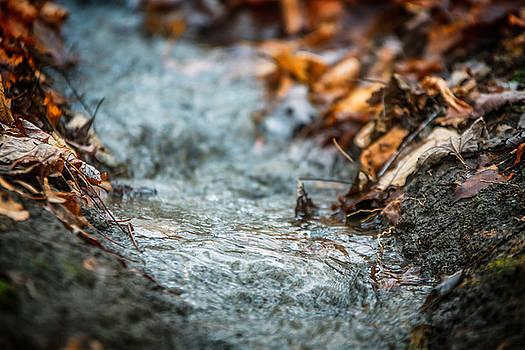 Chris Bordeleau - Autumn Creeklet