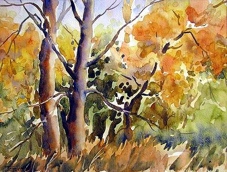 Autumn Dance 2 by Chito Gonzaga