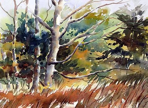 Autumn dance by Chito Gonzaga
