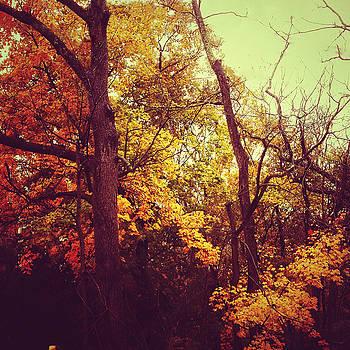 Autumn by David Oakill