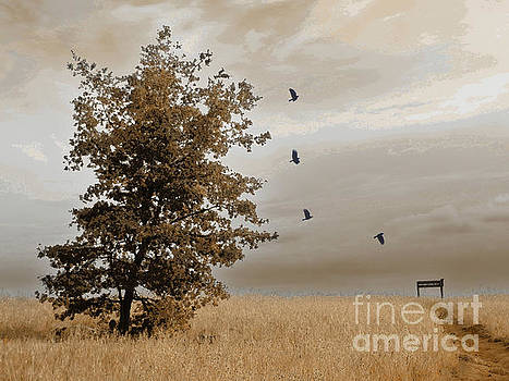 Autumn Day by Robert Ball