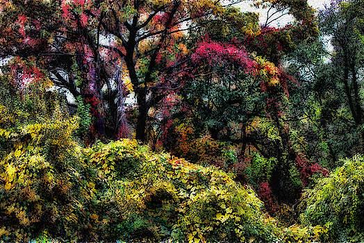 Autumn Daze by Jeff Breiman