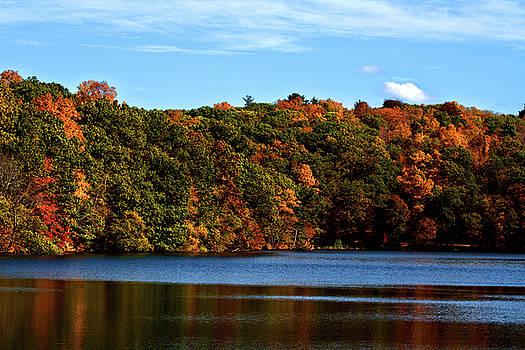 Autumn by Don Pettengill