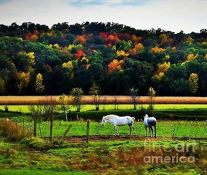 Autumn Dream by Becky Kurth