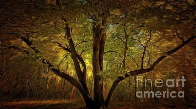 Autumn Enchantment by Putterhug Studio