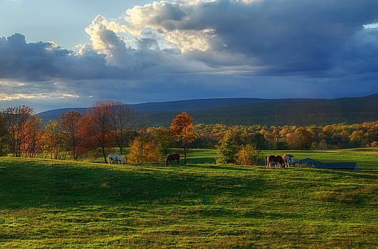 Autumn Evening by Eleanor Bortnick