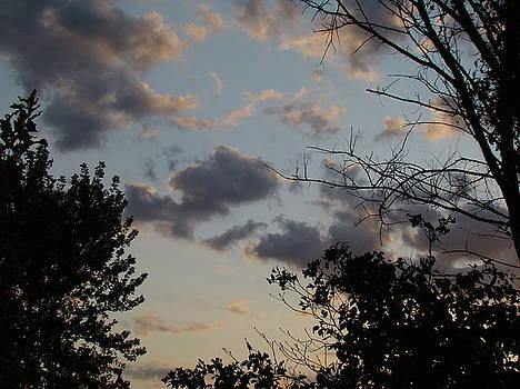 Autumn Evening by Martin Bellmann