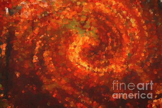 Autumn Explosion by Darren Fisher