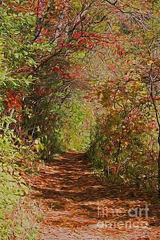 Barbara McMahon - Autumn Fairy Walk