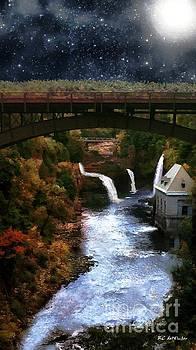 Autumn Falls by RC deWinter