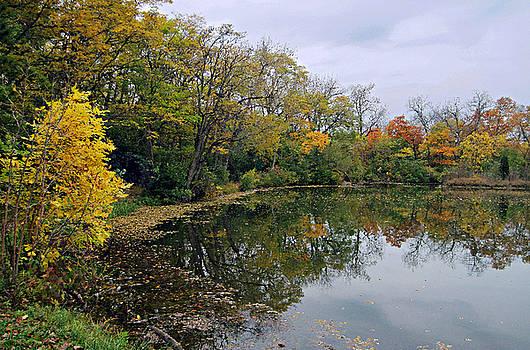 Autumn Fantasy by Cedric Hampton