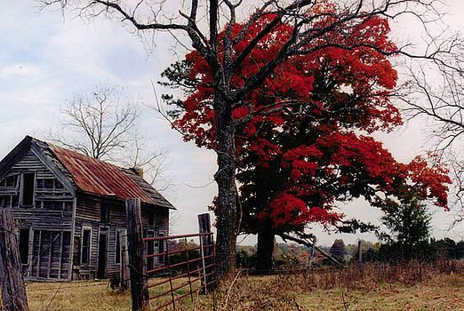 Autumn Farmhouse by CGHepburn Scenic Photos