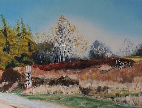 Autumn Fields by Phil Chadwick